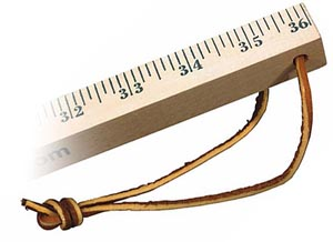 12 Inch School Ruler (sixteenths)